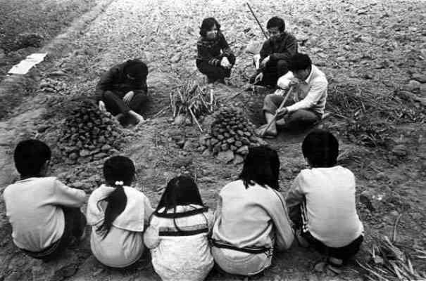 挖 薯 仔